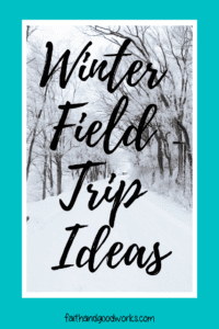 winter field trip ideas